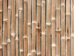 бамбук для стен