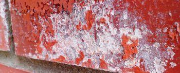 Устранение высолов на кирпичной кладке