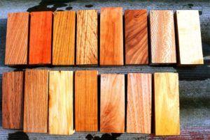 древесина окрас