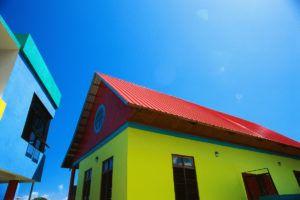 дом цветной