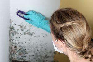 обнаружить грибок