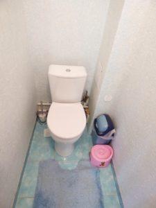 стена туалет