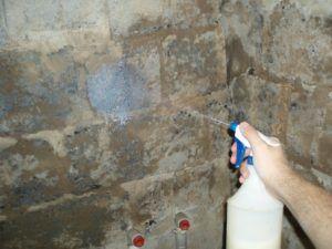 Обработка стен антисептиками