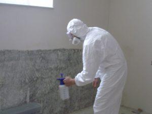 Обработка стен от плесени перед поклейкой обоев