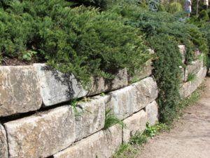 стена опоры
