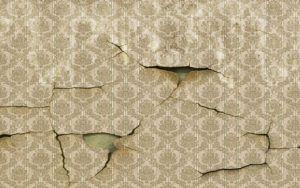 Порядок демонтажа флизелиновых обоев