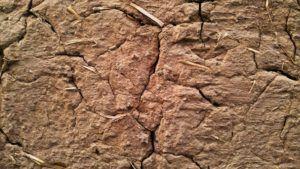 оштукатурить глиняную стену