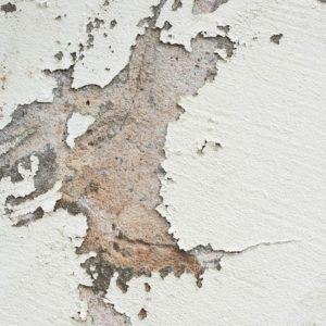 Порядок снятия побелки со стен